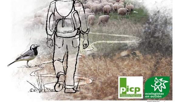 Actualidad Actualidad Horario y recorrido de las ovejas merinas trashumantes que pasarán el domingo por Galapagar y Colmenarejo
